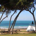 Drupal Surf Camp
